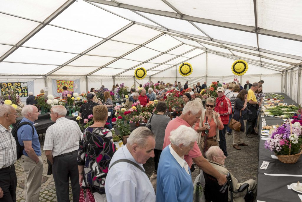 Your geraniums could be prize winners in this year's Knowsley Flower Show