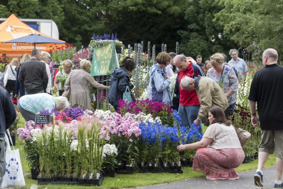 Knowsley Flower Show 9th August 2015 held at Court Hey Park Huyton