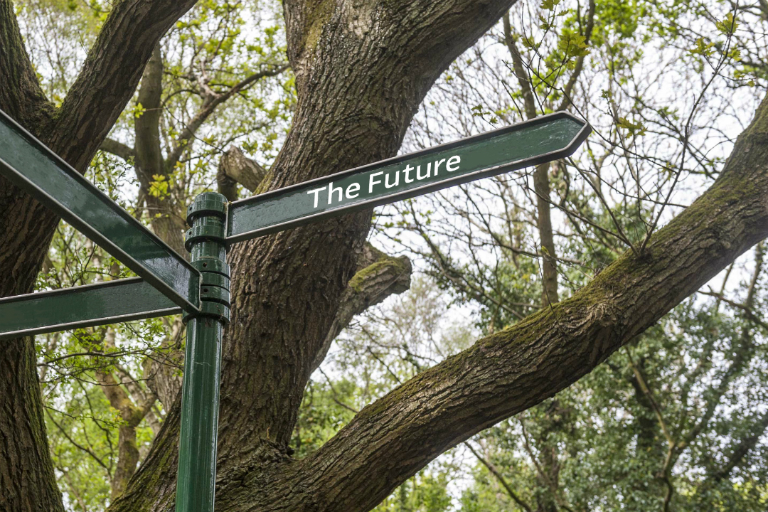A signpost with The Future written on it